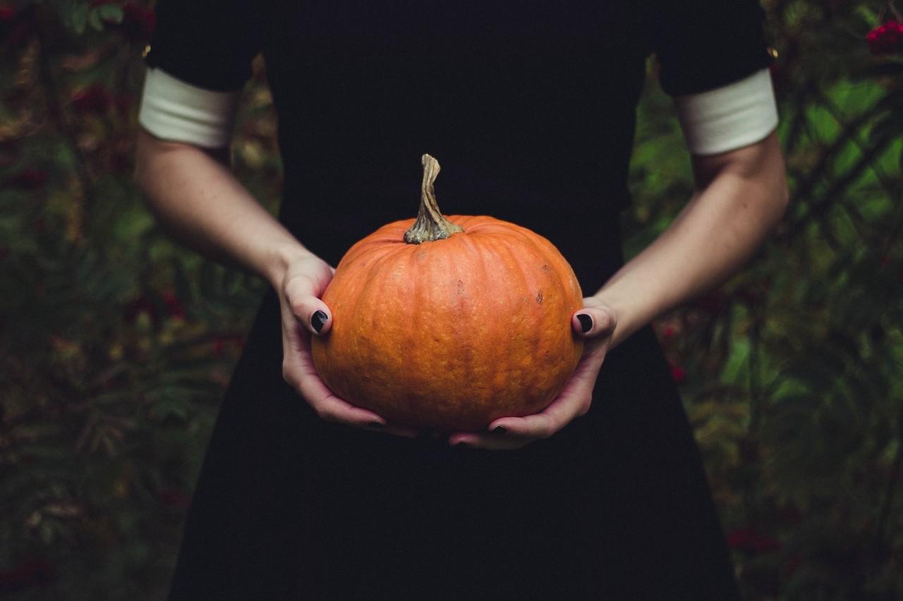 """Thanksgiving: breve storia del """"vero"""" Ringraziamento"""