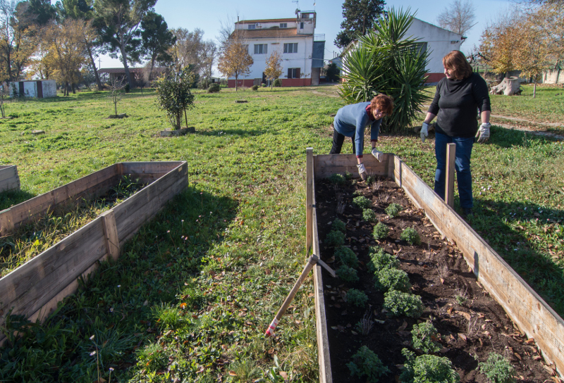 Ritorno al Sud: da Milano alla Puglia, per coltivare Bio. La (bella) storia di due sorelle e di una sfida. Vinta.