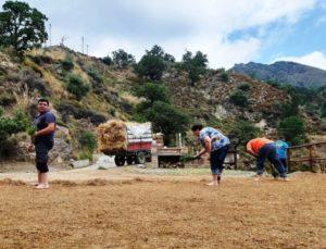 pulitura aia Nepitella Calabria