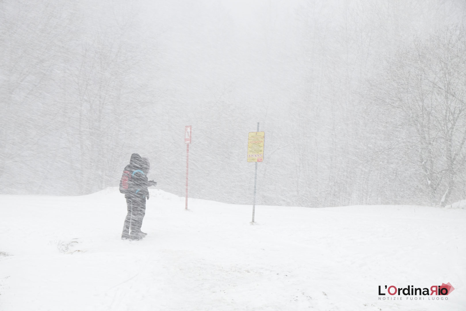 Le avventure di Behemoth (2) – Inverno e primavera o primavera e inverno?