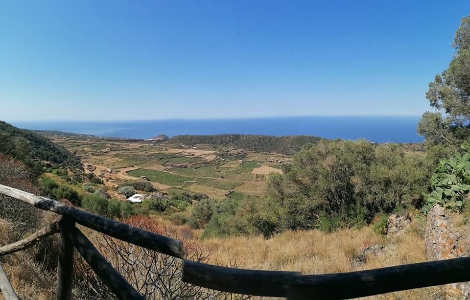 Il tour di Pantelleria tra vitigni, dammusi, grotte, mare, terme, capperi e buon cibo (tappa n.1)