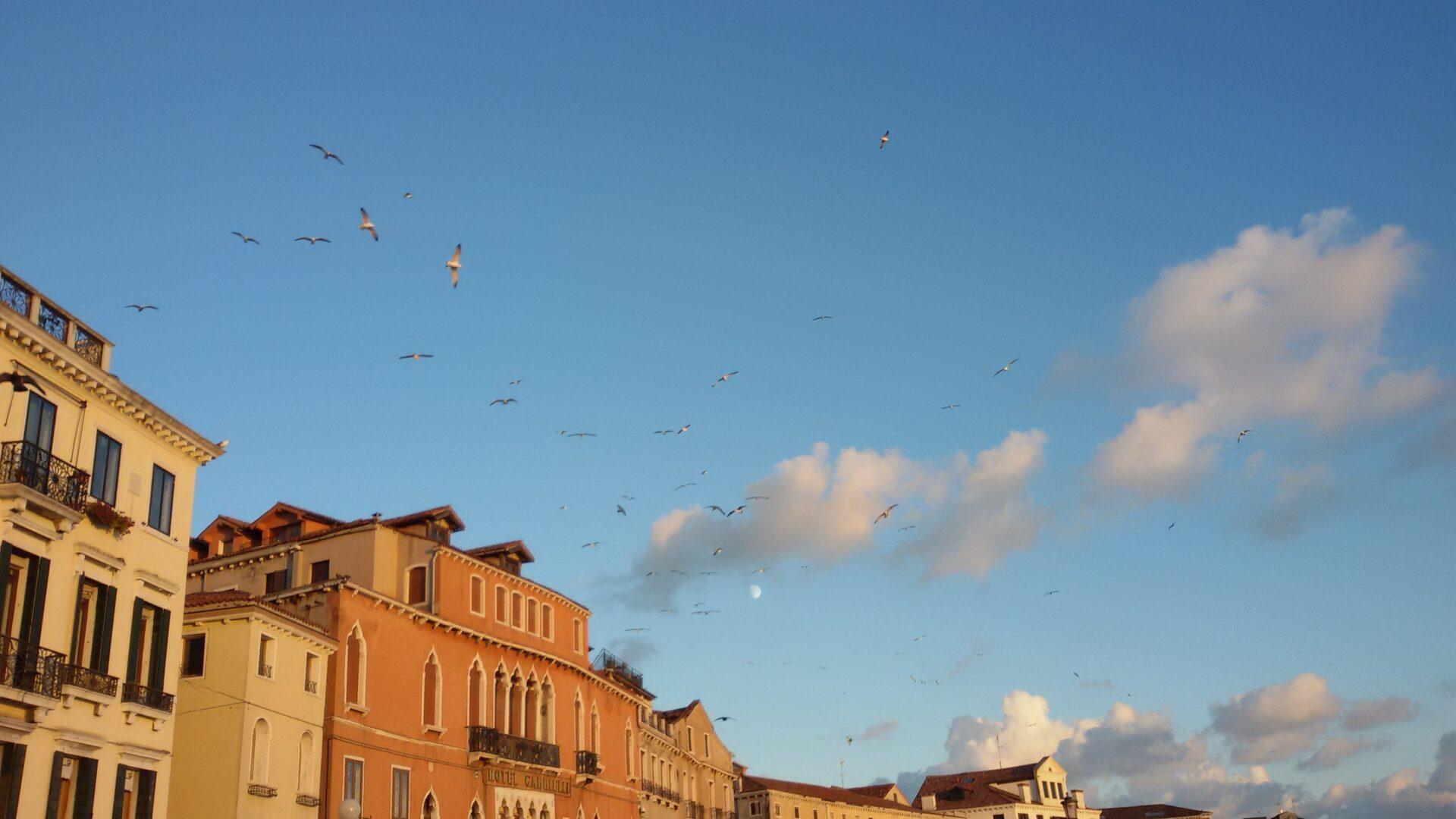 Venezia di sera_ Ph. Romina Lombardi